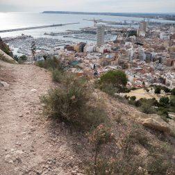 19' Alicante