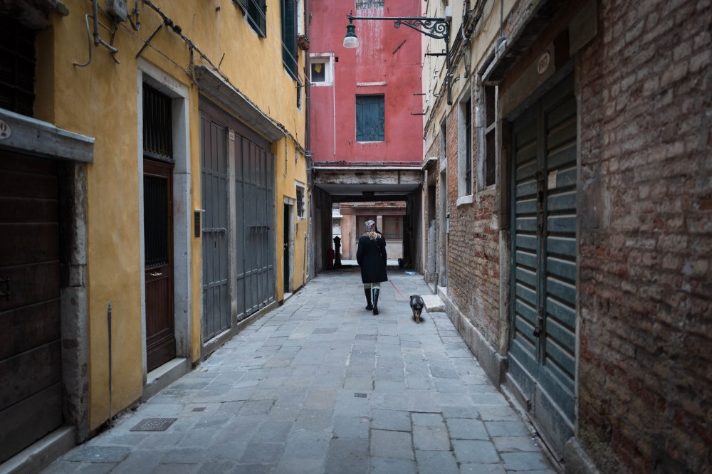 Lady and the dog, Venezia