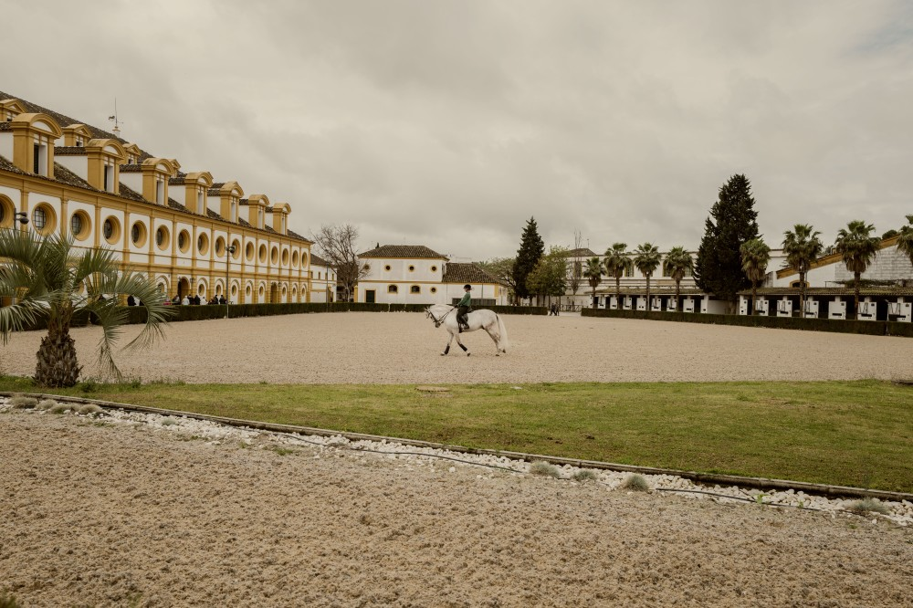 Jerez-Real Escuela de Arte Ecuestre-1040531-Edit