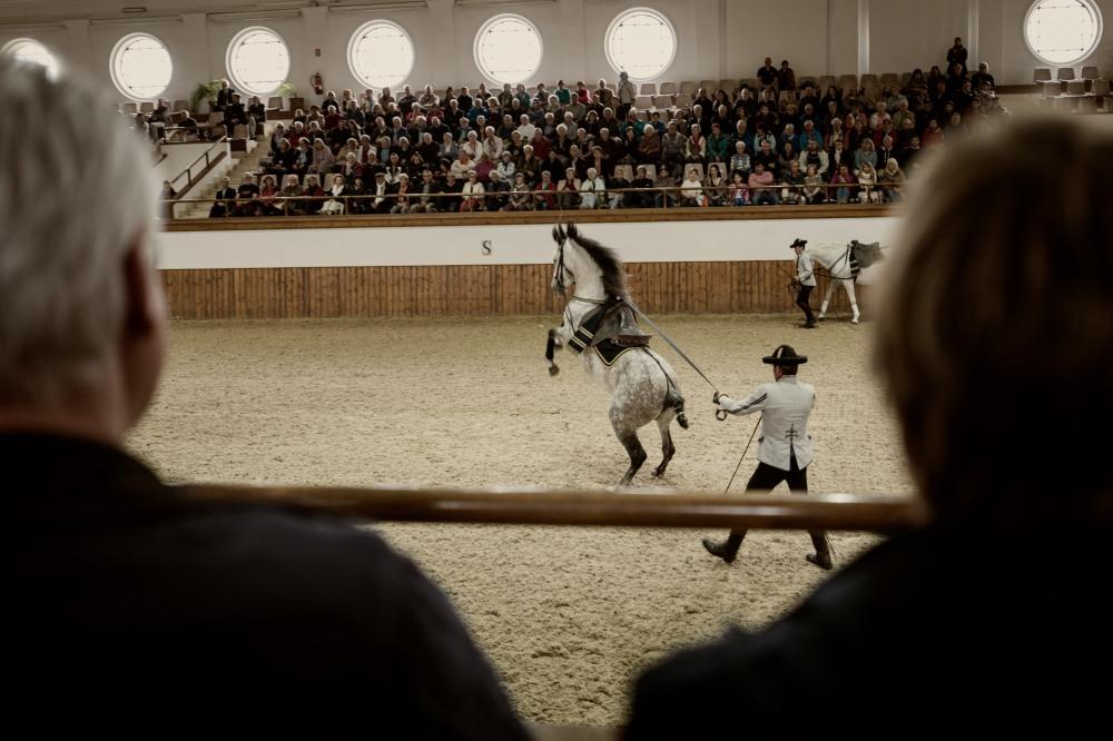 Jerez-Real Escuela de Arte Ecuestre-1040537-Edit