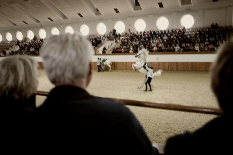 Jerez-Real Escuela de Arte Ecuestre-1040547-Edit